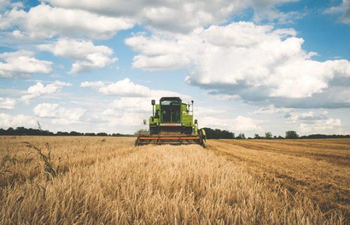 Rural Enterprise Development
